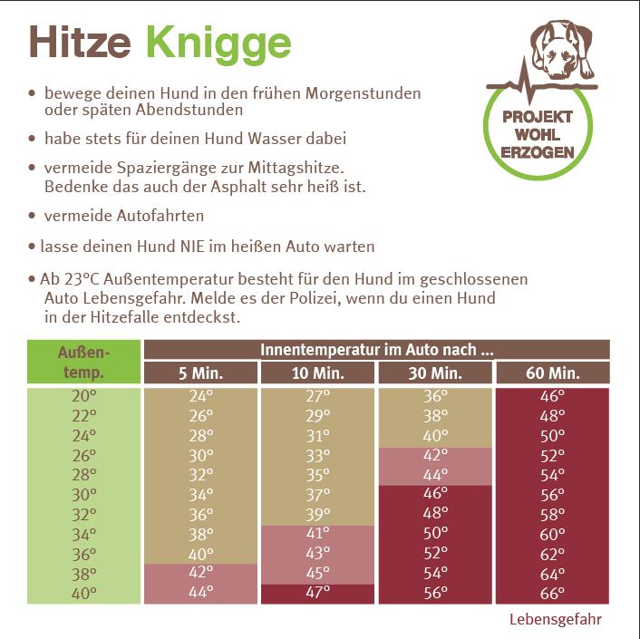 Hitze-Knigge Projekt Wohlerzogen