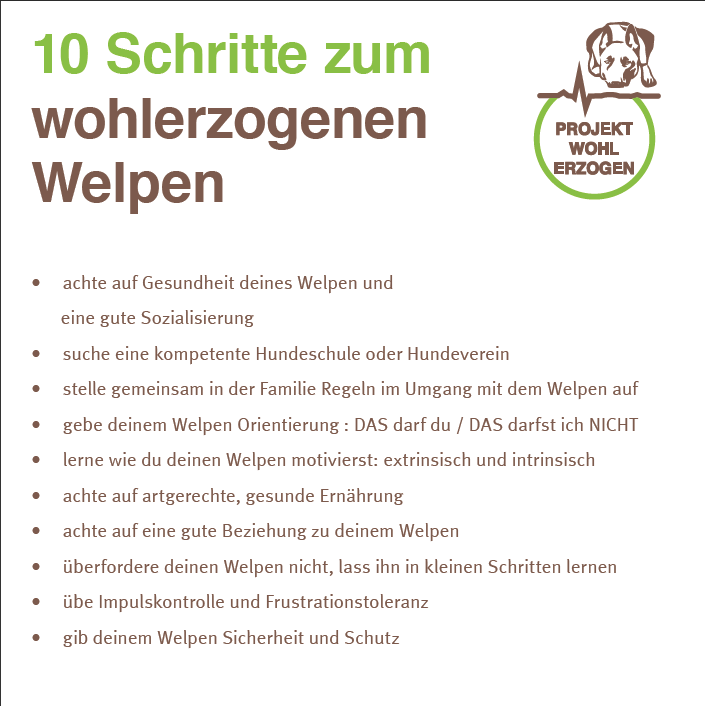 Welpen Knigge Projekt Wohlerzogen